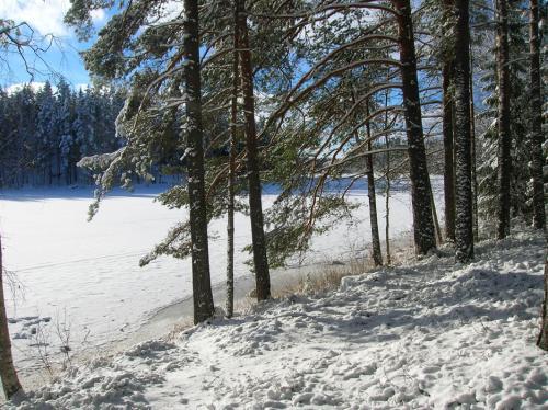 rana-talvi161