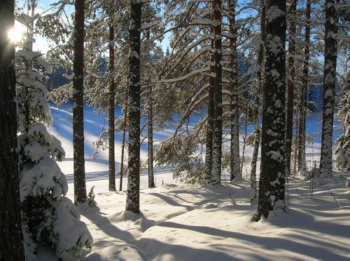 ranaiemi-talvi19-2